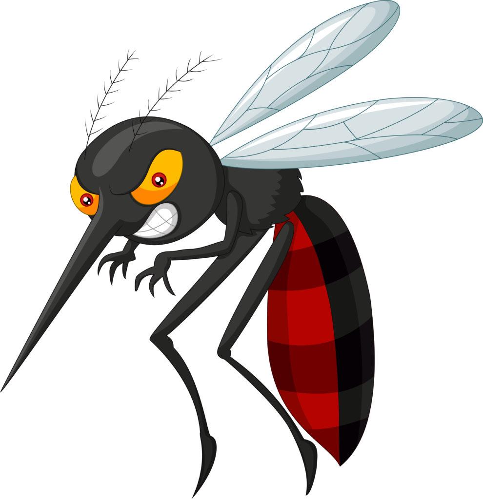 Prevenir a dengue